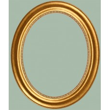 130 Series Gold 11x14 Oval Frame-Frames-Custom Framing Designs