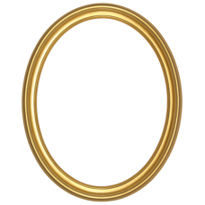 300 Series Gold 8x10 Oval Frame