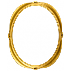 4205 Series Gold 16x20 Oval Frame-Frames-Custom Framing Designs