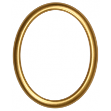 582 Series Gold 8x10 Oval Frame