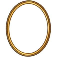 700 Series Gold with Bead and Rope 8x10 Oval Frame