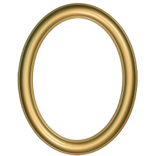 Premier Gold 12x16 Oval Frame-Frames-Custom Framing Designs
